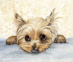 "Check out our website for additional details on ""yorkshire terrier puppies"". It is actually an outstanding area to read more. Yorkies, Yorkie Puppies, I Love Dogs, Cute Dogs, Top Dog Breeds, Art Watercolor, Yorkshire Terrier Puppies, Terrier Dogs, Bull Terriers"