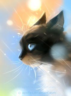 černá lesbo kočička fotky