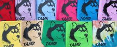 TAMR Bandana in 11 different colors! Only $5. 100% of proceeds go back to rescue.  Contact tamr@texalmal.org for info on how to get your furkid a bandana!