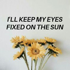 (@isleoftrapdoors ) cage the elephant // shake me down