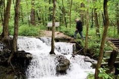 White Alloe Creek Conservation Area: Enjoy a day of history and nature at this area northwest of Kansas City. | Missouri Conservationist
