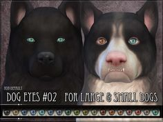 Non-default Eyes for the Sims 4 dogs Found in TSR Category 'Sims 4 Sets'
