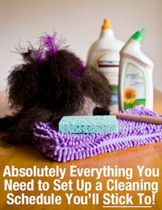 DIY Home Sweet Home - lots of hints for cleaning and organizing.