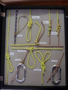 arborist knots for climbing and rigging pdf