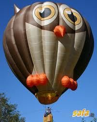 I would probably be willing to ride in this hot air balloon because I love Owls.