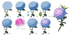 Anime Drawing Tutorial How to draw a Hydrangea flower Easy Drawing Tutorial, Flower Drawing Tutorials, Art Tutorials, Flower Drawings, Drawing Flowers, Flower Tutorial, How To Draw Flowers, Paint Flowers, Illustration Tutorial