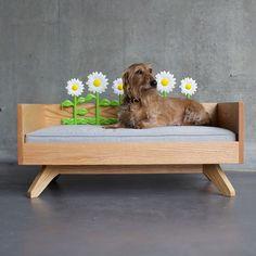 Spring has sprung! #petbed #dogbed #dog #doglover #cute #love #doglover #dogstagram #dogobsessed #dogoftheday #dogloversite #dogsofinstagram #doglover #petpics #petparent #petstagram #design #interiordesign #toronto #kingwest #libertyvillage #dachshund #minituredachshund #doxin #dogsareagirlsbestfriend #love #cute #puppy #pupandkit #instagood #instagramdogs