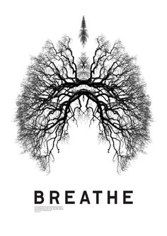 Just Breathe . breathe in . breathe out . breathe in . Design Graphique, Art Graphique, Plakat Design, Respiratory Therapy, Respiratory Humor, Respiratory System, Pranayama, Grafik Design, Yoga Inspiration