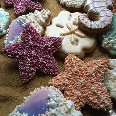 Seashell cookies, starfish cookies, gingerbread,
