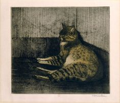 Chat Dormant Dans Un Coin (1902) (C 76) (3rd state) (Collection of the Bibliotheque Nationale de France)