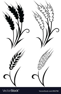 Wheat and rye Royalty Free Vector Image - VectorStock , Beading Patterns, Embroidery Patterns, Wheat Tattoo, Flora Und Fauna, Ears Of Corn, Wood Burning Patterns, Metal Art, Vector Art, Stencils