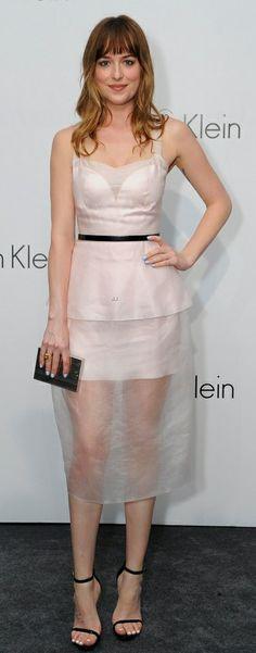 Dakota Johnson in Calvin Klein