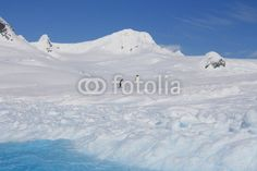 Antarctic landscape with penguins - Buy this stock photo and explore similar images at Adobe Stock Antarctica, Global Warming, Ecology, Freeze, Wilderness, Penguins, Frost, Reflection, Landscapes