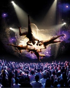 Fuerza Bruta has become oe of New York City's hottest Off-Broadway productions.