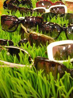 Sunglasses Displayed in Grass #merchandising
