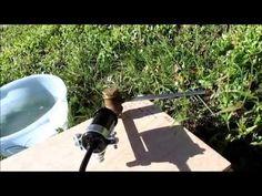 Apicoltura: sublimatore per acido ossalico - YouTube Youtube, Youtubers