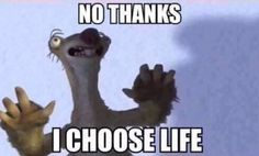 I choose life Sid Cops Humor, Police Humor, Ice Age Funny, Funny Relatable Memes, Funny Jokes, Hilarious, Funny Comedy, Funny Laugh, Stupid Funny