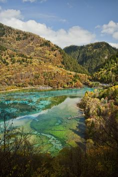 Jiuzhaigou Valley in Sichuan China [2832  4256]  Chen Siyuan #reddit