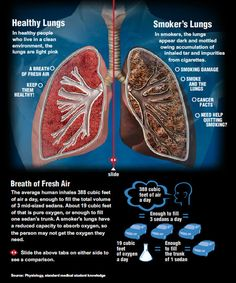 Healthy Lungs vs. Smoker's Lungs. For an interactive version go to: http://www.amerihealth.com/htdocs/custom/nj/infographic-lung.html