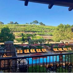 Good morning from the Napa Valley. Napa Vineyards, Napa Valley, Good Morning, Spa, Instagram, Buen Dia, Bonjour, Good Morning Wishes