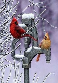 Old water pump + cardinals / paintings / artwork Pretty Birds, Love Birds, Beautiful Birds, Winter Pictures, Bird Pictures, Old Water Pumps, Cardinal Birds, Backyard Birds, Wildlife Art