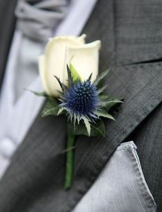 A good boutonniere to have with that bouquet with white rose and blue thistle. Boutonnieres, Thistle Boutonniere, Thistle Bouquet, Brooch Boutonniere, Groomsmen Boutonniere, Wedding Boutonniere, Blue Wedding Flowers, Wedding Flower Arrangements, Floral Arrangements