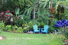 A beautiful garden in Florida with a nice place to sit.