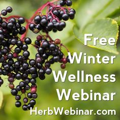 Stop a cold from taking hold! Join us for a free herbal webinar. http://herbwebinar.com