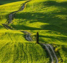 Road between fields (Tuscany) by Paweł Uchorczak on 500px