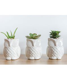 Búho - Matera Blanca. $35.000 COP. Encuentra más materas, floreros y plantas ornamentales en https://www.dekosas.com/floreros-plantas-ornamentales