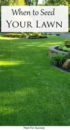 Lawn seeding usually gets talked about in spring and fall. But believe it or not, Dormant Seeding takes place in the winter and has a lot of benefits. Learn how dormant seeding your lawn will give you green grass in early spring. #landscaping #lawncare #lawnrepair