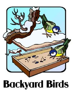 Connections ~ Birds Unit Study, Lesson Plans, Printables, Lapbook, Notebook Pages