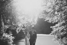 bride & groom in the redwoods | San Francisco wedding photography