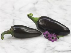 organically Grown-W 075 25 Premium 2018 Buena Mulata Pepper Seeds