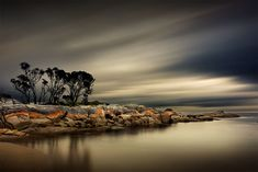 Another one taken down at Tasmania, in Binalong Bay. While there is that one tree that everyone photographs, there are other spots around there as well. One Tree, Another One, Tasmania, Rocks, Trees, River, Outdoor, Outdoors, Tree Structure