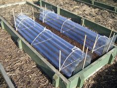Garden Cloches - A garden cloche is invaluable to the allotment gardener. Whether used to warm the soil and get a head start on the sowing season, or protect tender vegetables from cold temperatures. Cold Frame Gardening, Allotment Gardening, Organic Gardening, Edible Garden, Vegetable Garden, Garden Cloche, Prayer Garden, Farm Gardens, Garden Structures