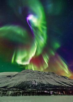 Aurora in Kitdalen, Norway by Wayne Pinkston