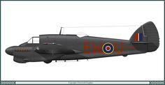Bristol Beaufighter Mk.2F - 307 Dywizjon PSP