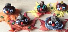 Kastanje hoofdjes -- uit de categorie: Andere ideeën Scouting, Diy And Crafts, Autumn, Christmas Ornaments, Holiday Decor, Craft, Xmas Ornaments, Fall, Fall Season