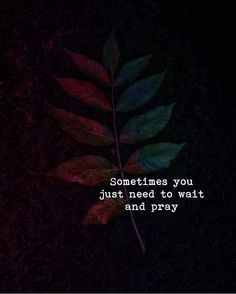Sometimes you just need to wait and pray.