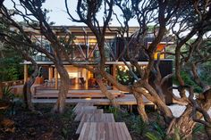 A holiday house at Piha inspired by the pohutukawa around it has won New Zealand's richest architectural prize.