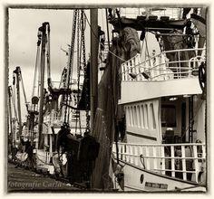 Havens IJmuiden