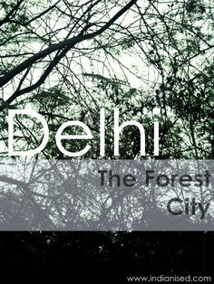 The Kind Of Delhi You Never Knew About; Delhi, The Forest City | Indianised