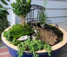 Miniature Outdoor Gardens