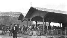 Mercado dos Caipiras, anos 1900 - Raul Goldschmidt