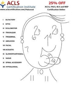 Free customizable nursing brain sheets in PDF and word