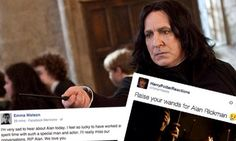 Alan Rickman was truly an amazing and talented man. I can't believe he's gone. Rest In Peace, Alan.