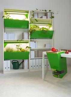 Desktop and bookshelf composting in an office workspace: work green ; Gardenista