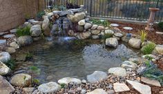 Inexperienced contractors can turn your backyard ponds into nightmares! Do your research before you hire. Ponds Gone Wrong is an epidemic…