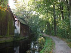 Vervallen romantische schuren aan de Bezuidenhoutseweg met uitkijk op pad in het Haagse Bos (Verleden Tijd). Foto door Haaglander.